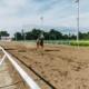 horse-running-in-field-1462361